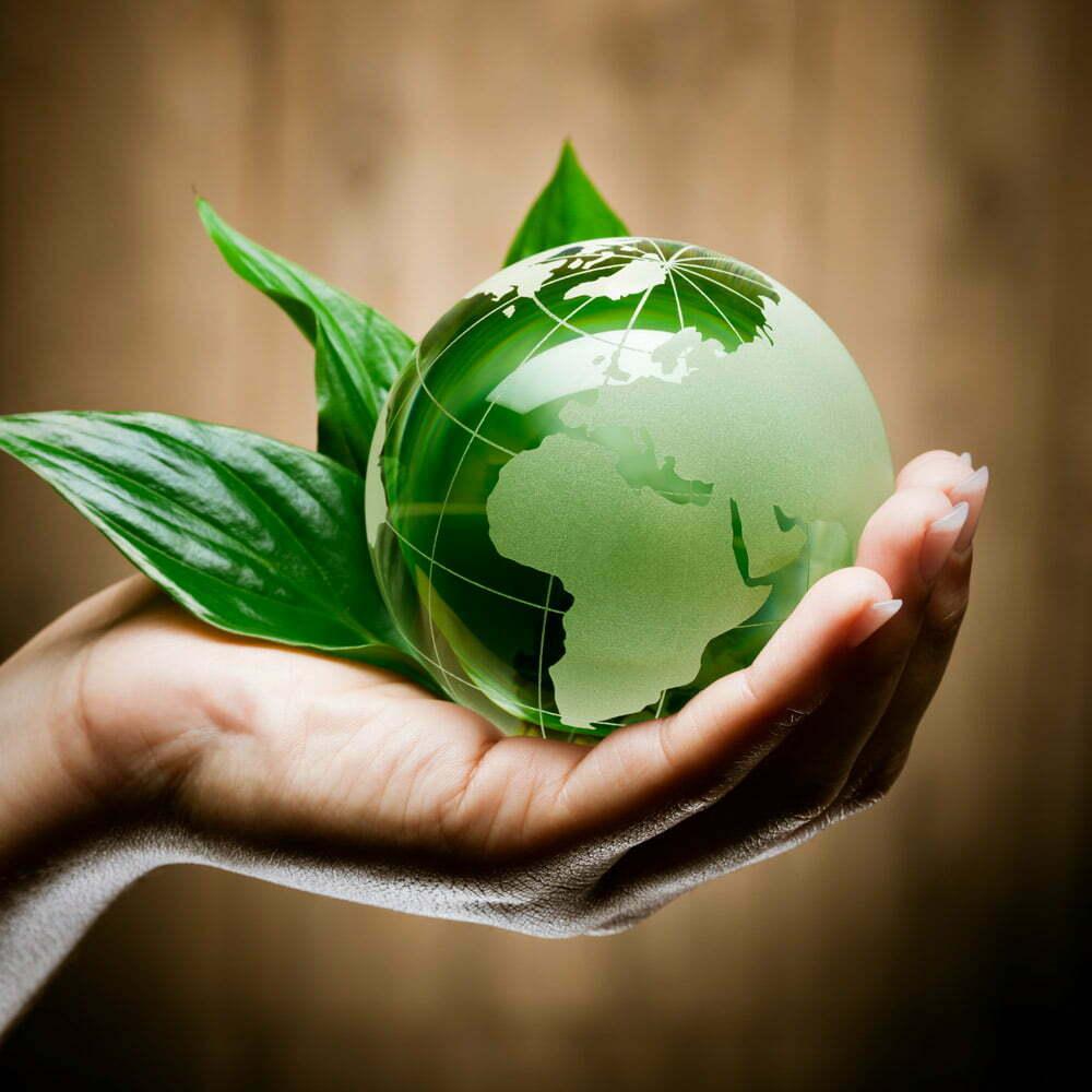EURO GREEN, projekat Elektrana na biogas u GLOBAL SEED DOO