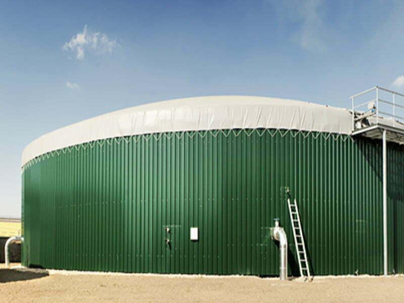 EURO GREEN, Projekat Elektrana na biogas za Global Seed