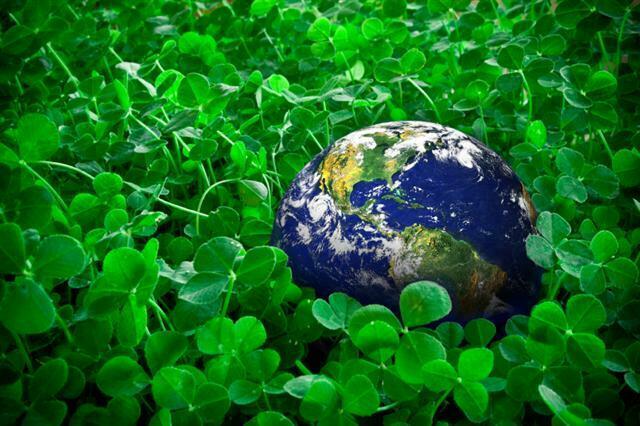 EURO GREEN, projekat Centar za pakovanje čvrstih formi u HEMOFARM AD